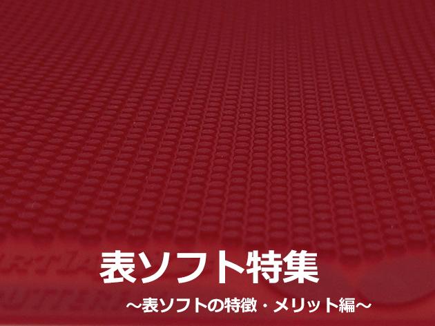 【表ソフト特集】表ソフトの特徴・メリット編